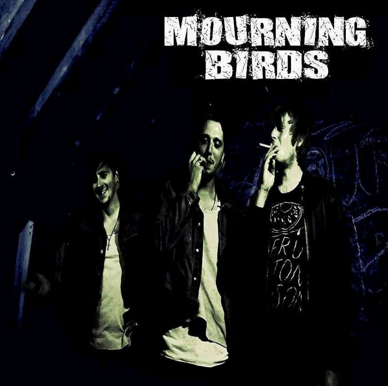 MourningBirds-800