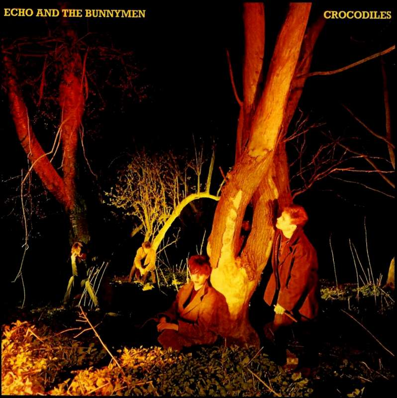 EchoCrodocdiels-800