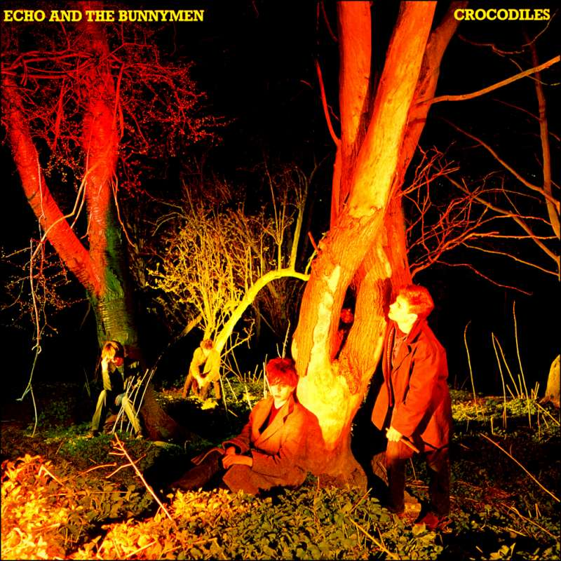 EchoCrocodiles-800