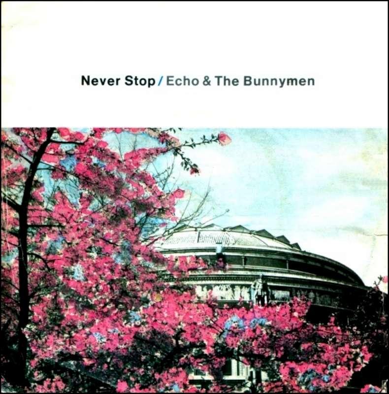 EchoNeverStop-800