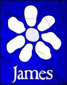 James-800